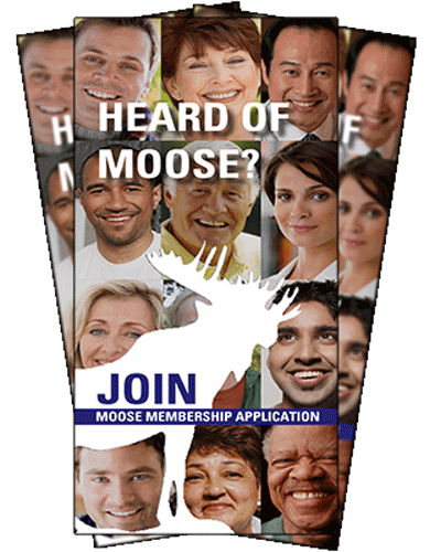 Moose application4men-women